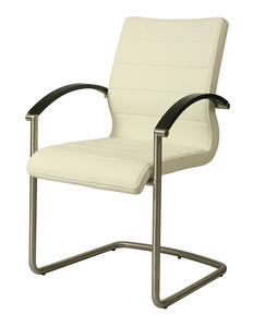 Akasha Side Chair (Stainless Steel, Wenge Veneer & Ivory Finish) - [AK-117-SS-WE-978]